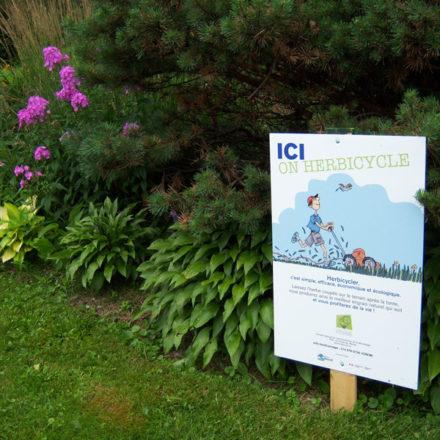 Herbicyclage, campagnes de sensibilisation pour une pelouse dont on prend soin